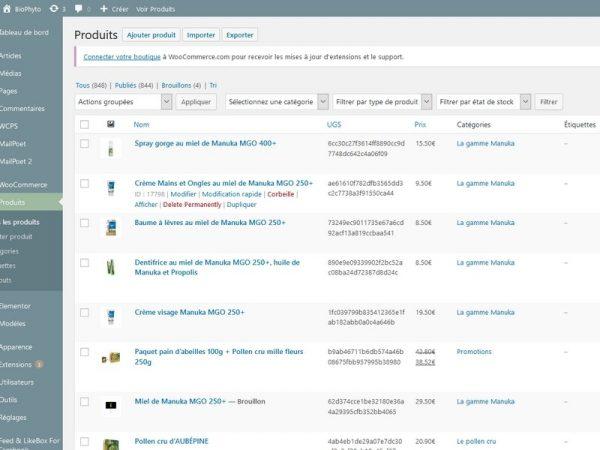 Produits Boutique Wordpress