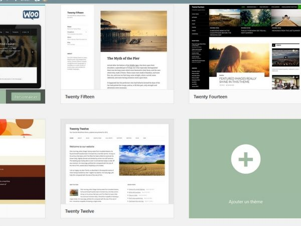 Choix theme wordpress